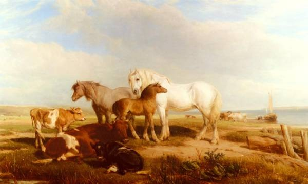 Horses And Cattle On The Shore